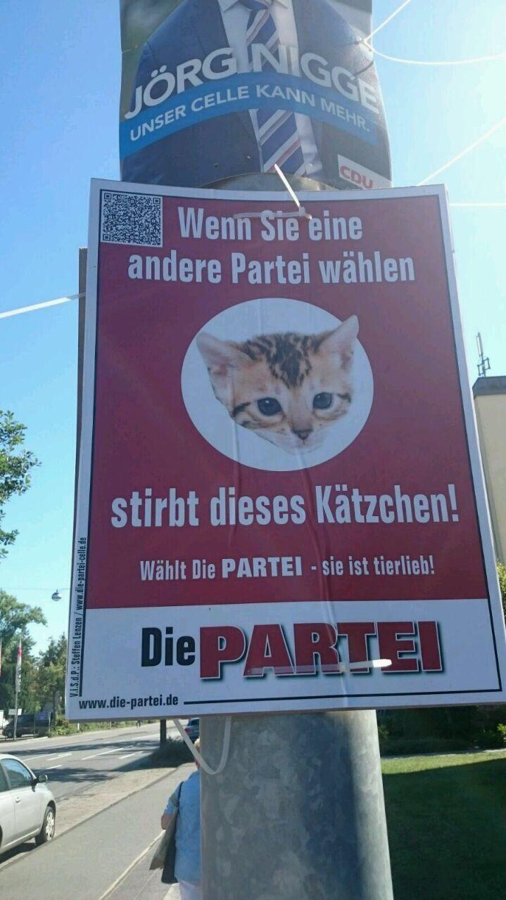 wenn sie eine andere partei wählen, dann stirbt dieses kätzchen. | @die partei