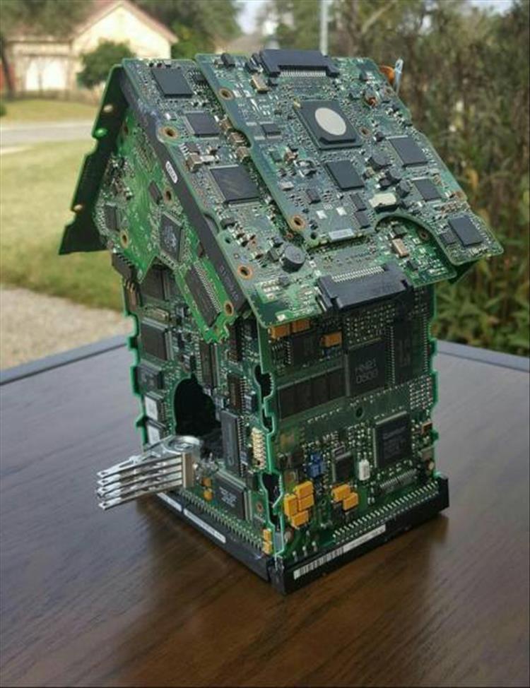 vogelhaus typus geek.