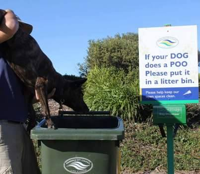If your DOG does a POO, please put it in a litter bin.