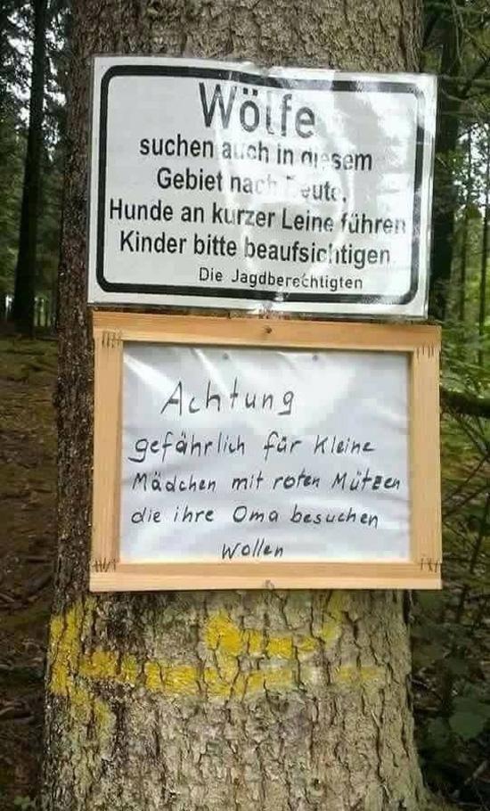 Wölfe suchen auch in diesem Gebiet nach Beute!