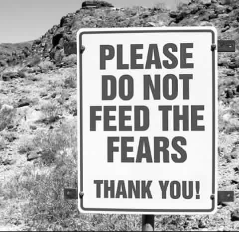 fütter nicht deine ängste