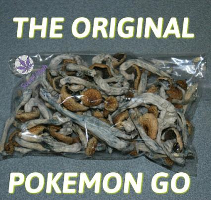 the original pokemon go