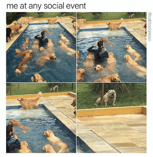 me at any social event