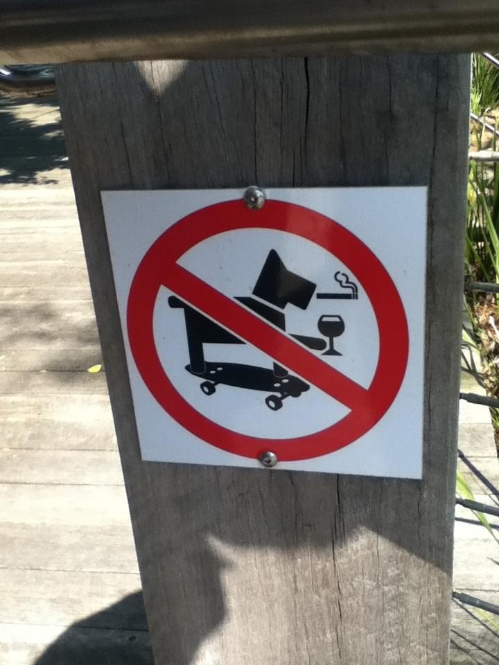 kooler hund