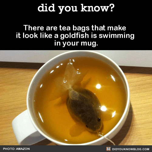 idee?! | http://www.mentalfloss.com/article/71936/these-tea-bags-transform-goldfish-your-mug