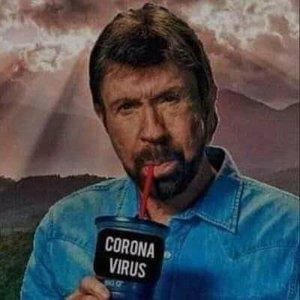 chuck norris corona-virus