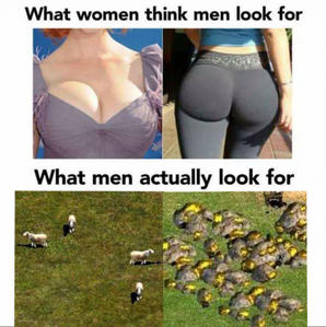 what women think men look for ...